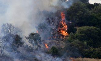 Πενήντα έξι δασικές πυρκαγιές το τελευταίο 24ωρο σε όλη την Ελλάδα