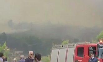 Εκτός ελέγχου η φωτιά στην Εύβοια – Ηχούν οι καμπάνες των χωριών που εκκενώνονται