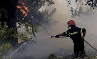 Υπό έλεγχο η φωτιά στον Μαραθώνα – Καλύτερη η εικόνα στην Ελαφόνησο