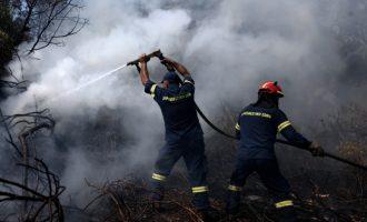 Πυρκαγιές ξέσπασαν στη Μεσσηνία