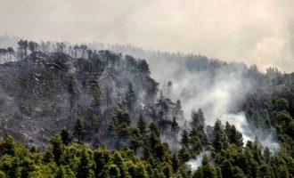 Συνεχίζεται η μάχη της κατάσβεσης της μεγάλης πυρκαγιάς στην Εύβοια