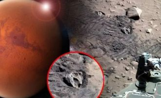 «Ειδικός εξωγήινων» είδε απολιθωμένο «κρανίο δεινοσαύρου» στην επιφάνεια του Άρη