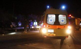 Αγριογούρουνα προκάλεσαν κι άλλο τροχαίο στα Τρίκαλα – Αυξάνονται ραγδαία