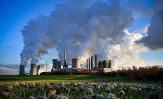 Η κινητοποίηση των επιχειρήσεων ανάχωμα στην κλιματική αλλαγή