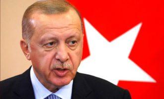Ο Ερντογάν «πέμπτη φάλαγγα» της Ρωσίας στο ΝΑΤΟ – Δεν υποστηρίζει την άμυνα της Βαλτικής
