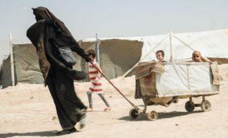 Παιδιά της οργάνωσης Ισλαμικό Κράτος «εξαφανίστηκαν» πριν επαναπατριστούν στη Σουηδία