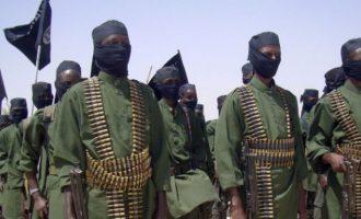 Οι Αμερικανοί έπληξαν τζιχαντιστές της Αλ Σεμπάμπ στη Σομαλία