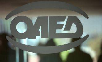 Η ΝΔ «διώχνει» 5.500 συμβασιούχους νέους επιστήμονες – Ποιο πρόγραμμα του ΟΑΕΔ καταργεί