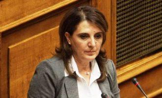 Η Τελιγιορίδου λέει στον Βορίδη για τη βασιλόπιτα των 12.000: «Φιέστες να κάνεις με δικά σου έξοδα»