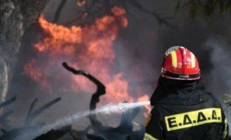 Φωτιές σε Κορινθία, Επίδαυρο, Χαλκιδική, Εύβοια – Οι πυροσβέστες μάχονται παντού