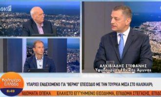 Αλκ. Στεφανής: Η μαχητική ισχύς της Ελλάδας είναι εξαιρετική