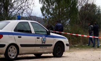 Θρίλερ στη Θεσσαλονίκη: Δύο νεκροί άντρες σε δασική περιοχή της Ευκαρπίας