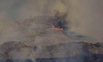 Η φωτιά σάρωσε τις Μυκήνες – Στις φλόγες η πρωτεύουσα των Ελλήνων της Εποχής του Χαλκού