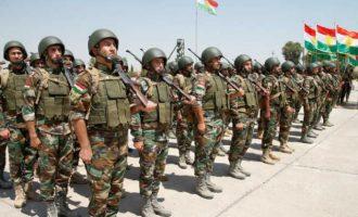 Αρχίζει ξανά η εκπαίδευση των Κούρδων Πεσμεργκά από τον Διεθνή Συνασπισμό υπό τις ΗΠΑ