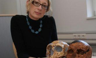 Η Ελληνίδα Κατερίνα Χαρβάτη τιμάται με το κορυφαίο γερμανικό βραβείο έρευνας