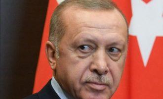 Αντίποινα της Τουρκίας στην Ιταλία για το «δικτάτορας» με επιπτώσεις σε τουλάχιστον 4 ιταλικές εταιρείες
