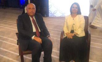Συνάντηση Σούκρι-Μανγκούς: «Η Αίγυπτος απαιτεί την άμεση αποχώρηση όλων των μισθοφόρων και ξένων μαχητών από τη Λιβύη»