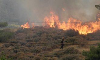 Δασικές πυρκαγιές σε Κορινθία και Αιτωλικό