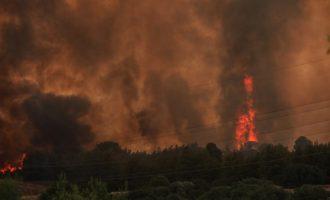 Φωτιά στην Εύβοια: Εκκενώνεται το Μαντούδι