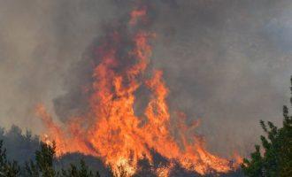 Φωτιά σε δυο μέτωπα στη Νέα Μάκρη