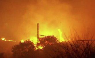 Φωτιά Αττική: Εντολή για άμεση εκκένωση σε Άγιο Στέφανο, Καπανδρίτι και Πολυδένδρι