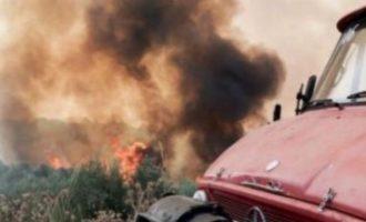 Δύο πυρκαγιές στην Αττική παράλληλα: Σε Πάρνηθα και Κάλαμο