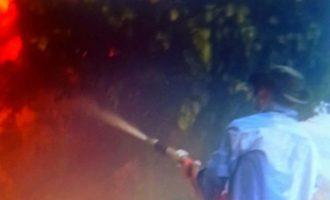 Ο κατηγορούμενος «εμπρηστής» του Κρυονερίου έσβηνε φωτιές στη Βαρυπόμπη – Ανατρεπτικές μαρτυρίες